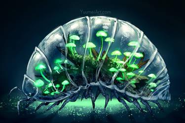 Worlds Within: Pill Bug Terrarium