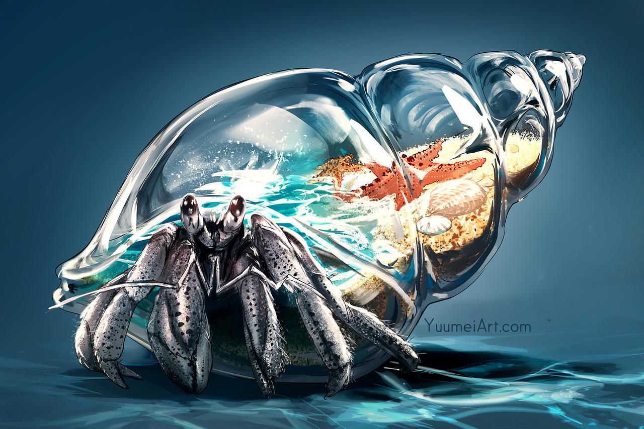 Worlds Within: Hermit Crab