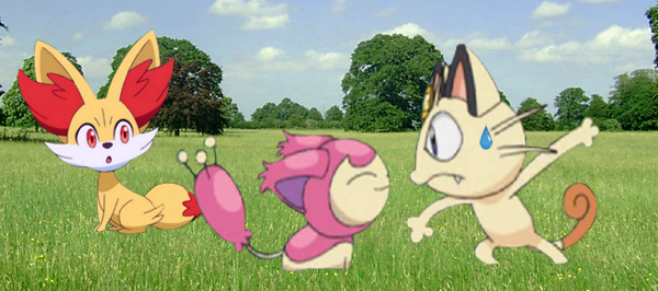 Skitty, what are you doing here ? by lopez765
