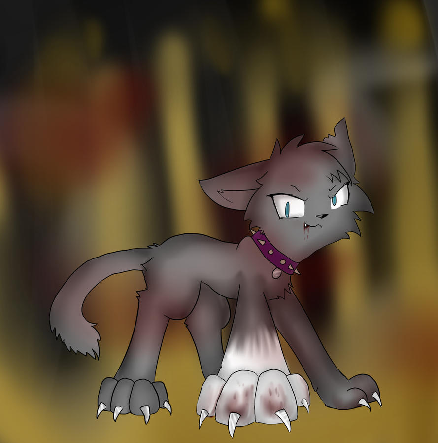 Sss Warrior Cats The Movie: Scourge Will Kill You By Sonamy2905 On DeviantART
