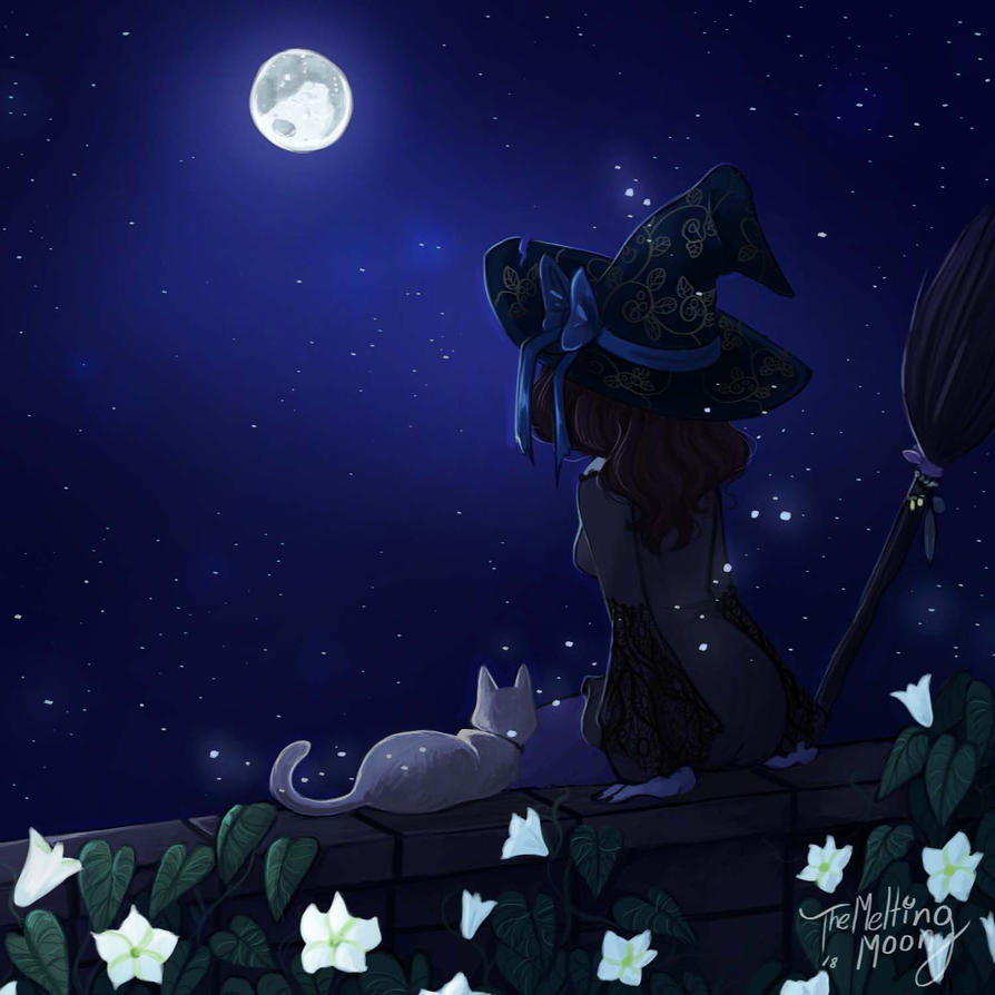 Blue Moon Gazing With Moon Flowers By Themeltingmoon On Deviantart