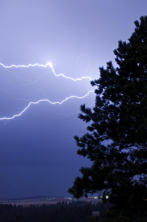 Lightning Tree by Corvidae65