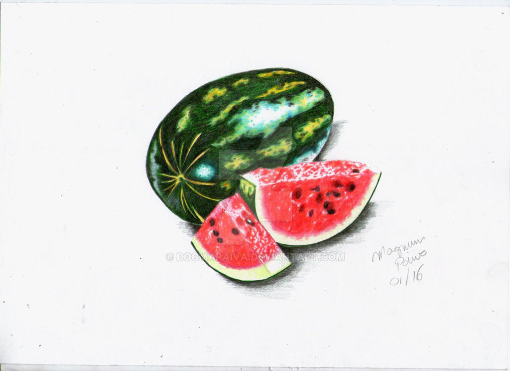 Watermelon 100 % crayons by dogmapaiva