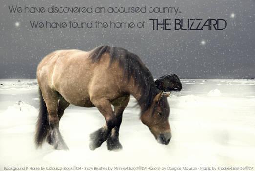 Lost in the Blizzard