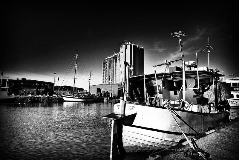 Harbor by HeroinForMyHeroine