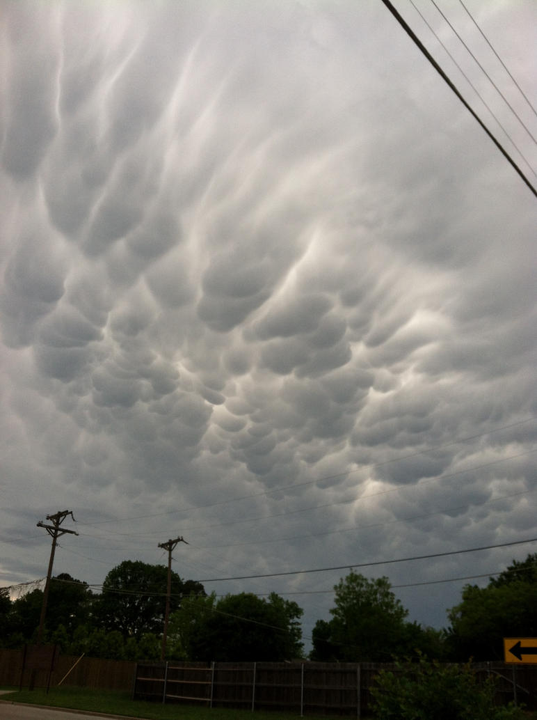 Mammatus clouds by Phaedris