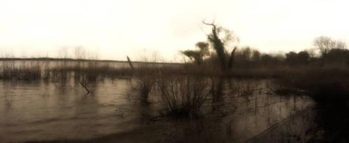 Sunset Grapevine Lake TX 2016_0412 by Phaedris
