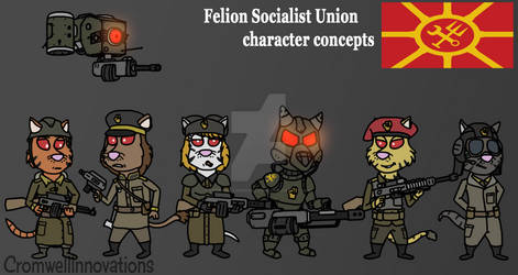 FSU character concepts