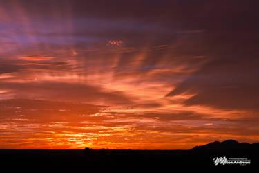 Desert Sunset by andmil