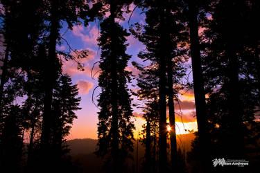 Yosemite Setting Sun by andmil
