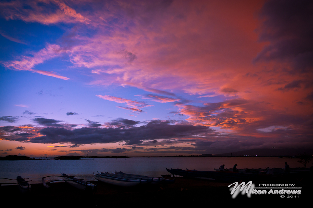 Hawaiian Colors by andmil