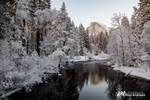 Yosemite Valley I