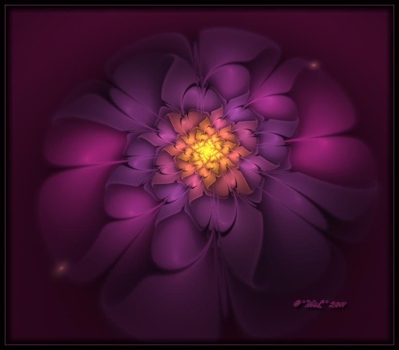Fleur en Apophysis.. by MeLinFrance