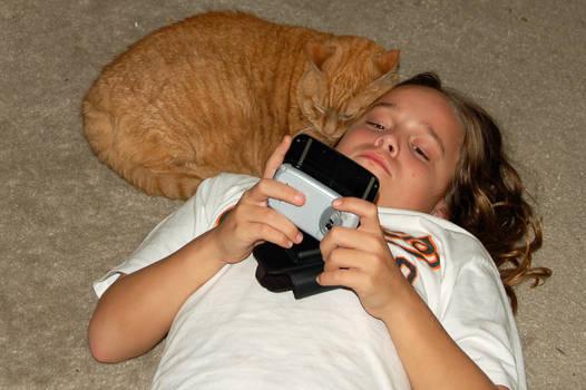 Cat Messaging
