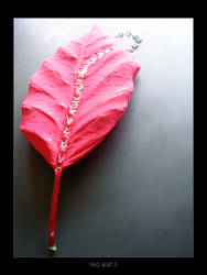 red leaf 3 by SunIsRising
