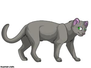 Warrior Cats Gossip