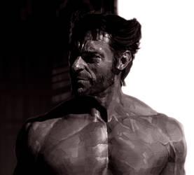 Wolverine by kse332
