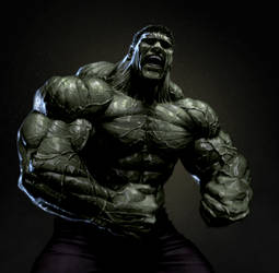 Hulk by kse332
