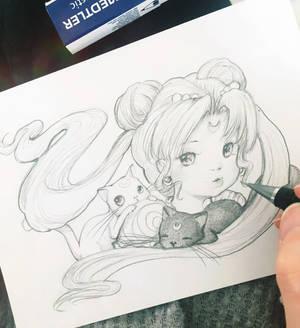 Morning Sketching Sailor Moon