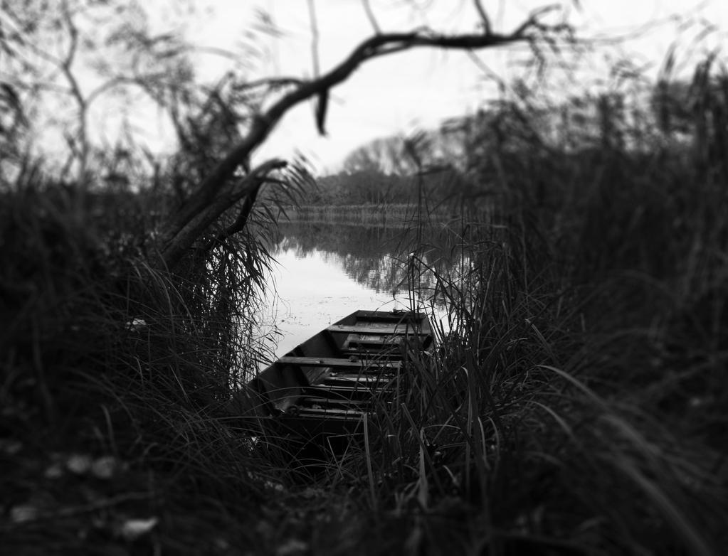 last journey by elizabethtown60B