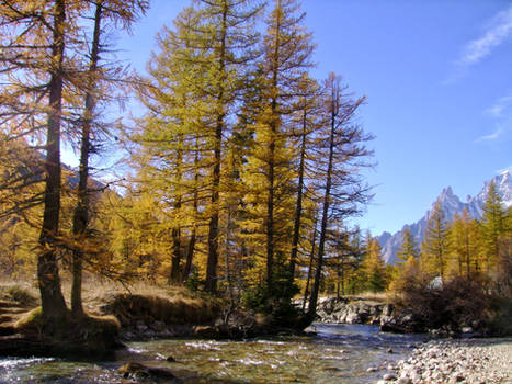 October in the Italian Alps IV