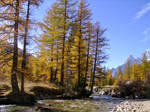 October in the Italian Alps IV