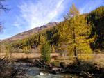 October in the Italian Alps V