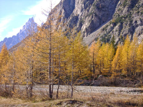 October in the Italian Alps VII