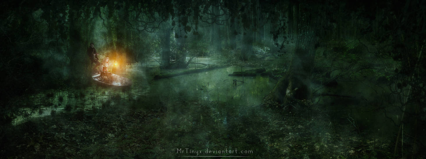 Through the Swamp by Niolu