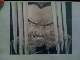 Wolverine by suzikinz