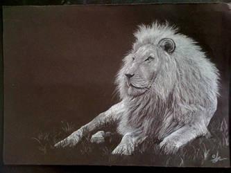 Lion by suzikinz