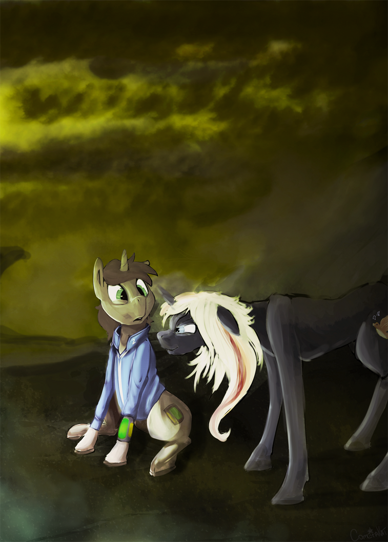 PH fan art thread - Page 15 Littlepip_and_velvet_by_cometakat-d9sxo5x