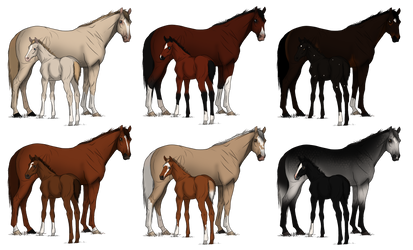 Thoroughbred Mare/Foal Adopts CLOSED by CaptainMaddi