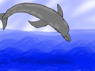Dolphin jump by Keyotea
