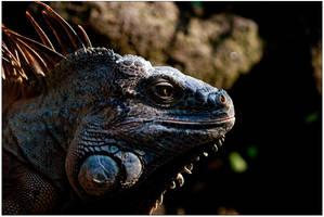 Godzilla by Mantis-nk