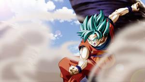 Thanks Goku! Until We Meet Again...