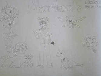Marriland's Emerald Nuzlocke: Hall Of Fame by TheDrewdler