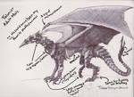 Talonier Dragon Concept Art