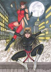 Assassins: Dare the Terminator and Catsai 3