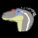 Jurassic park 3 velociraptor male head.