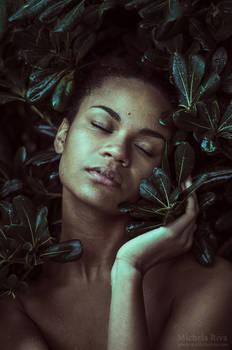 Wild Stories - Isabell II