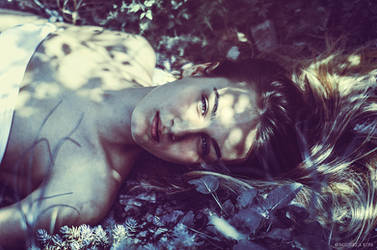 Wild Stories - Michelle in the Woods V