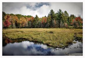 Northern Beauty by jasonwilde