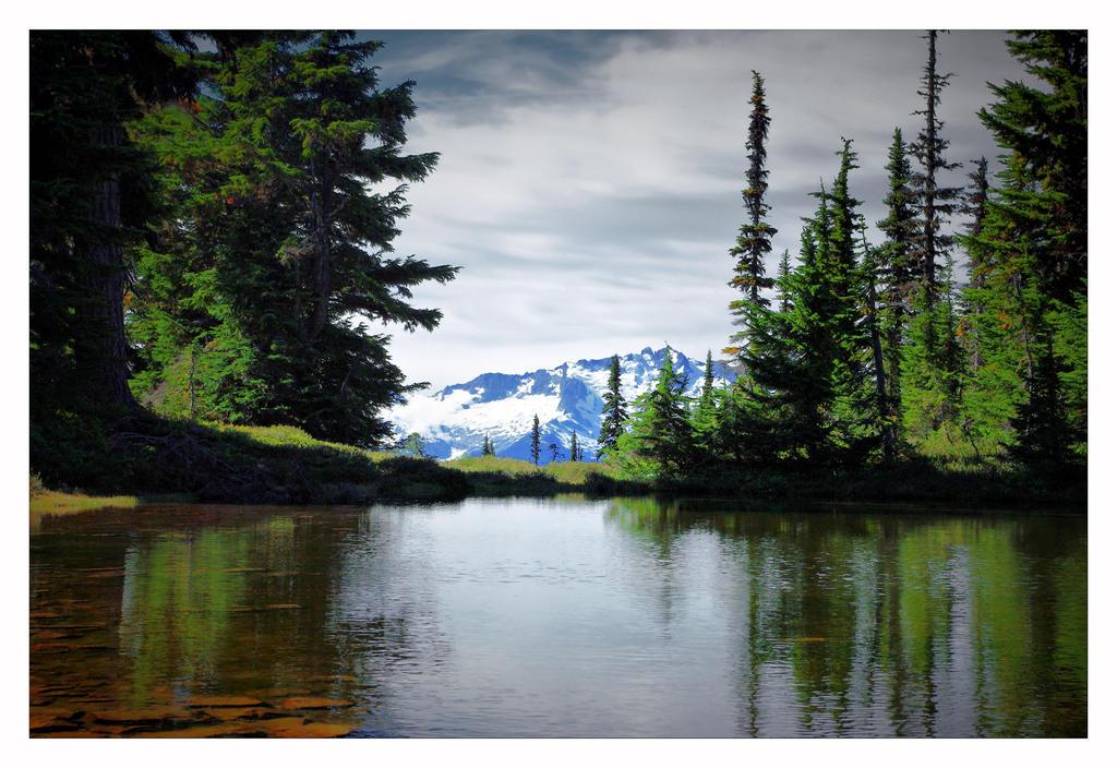 Peaking Through by jasonwilde