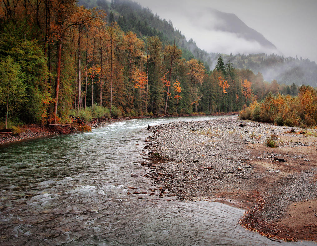 Salmon fly fishing by jasonwilde on deviantart for Fly fishing for salmon