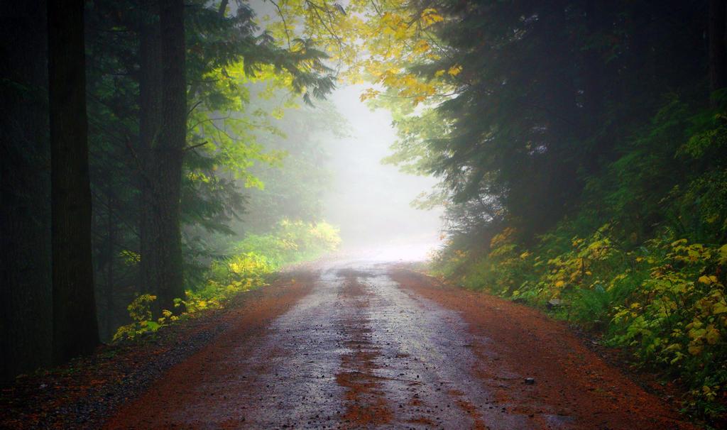 My Escape by jasonwilde