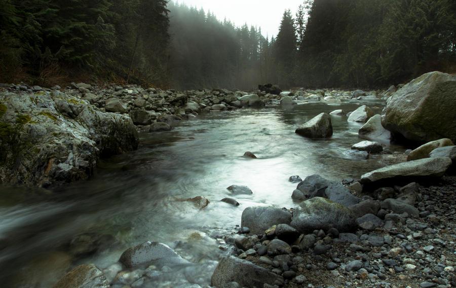 Foggy Calm by jasonwilde