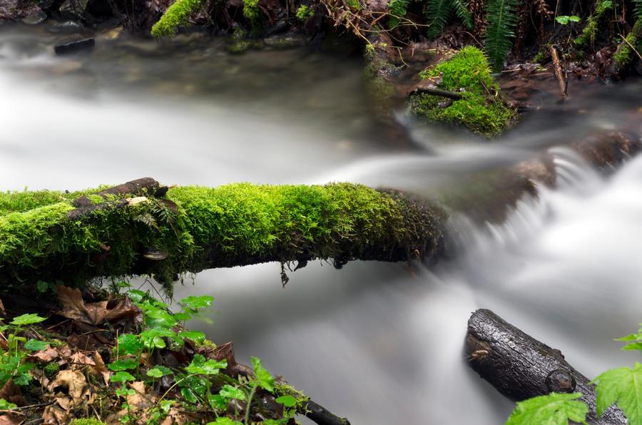 Cascade Mist by jasonwilde