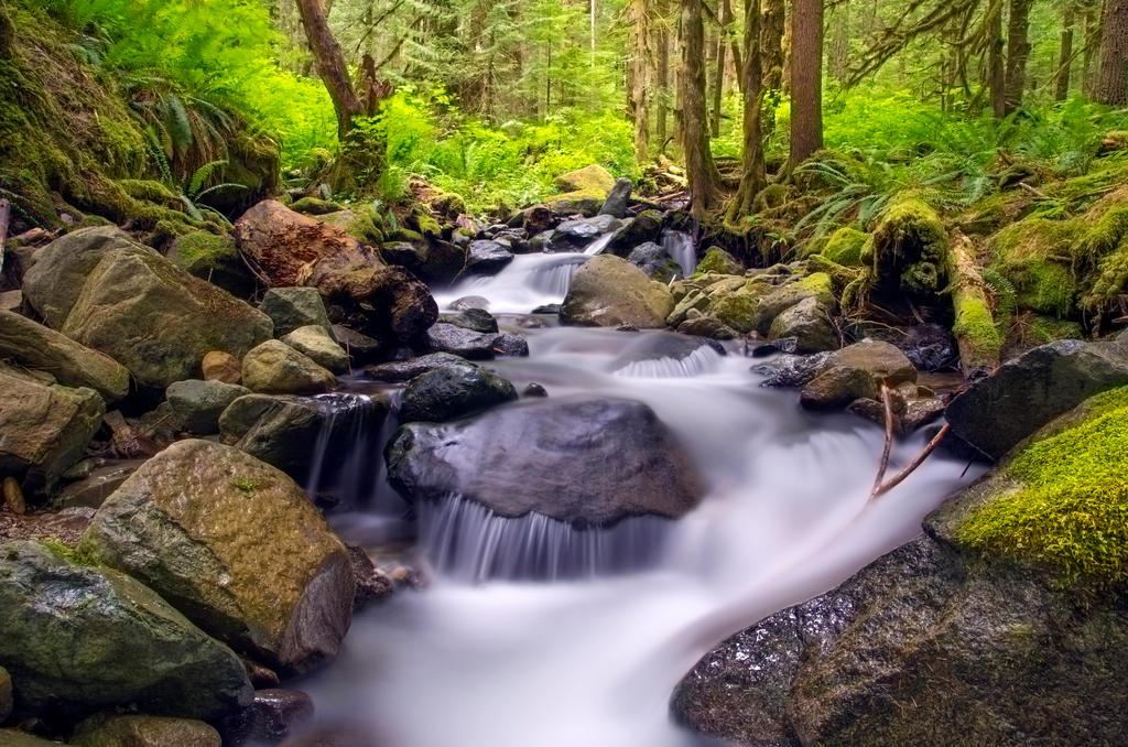 Nooksack Valley by jasonwilde