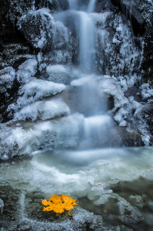 Frozen Fall by jasonwilde